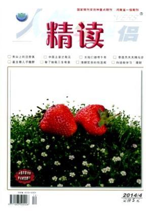 人生与伴侣(月末版)河南省文学期刊