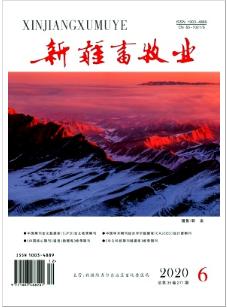 新疆畜牧业新疆畜牧论文发表期刊