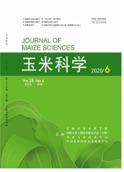 玉米科学农业科技论文发表期刊