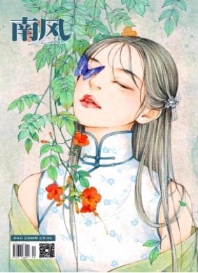 南风综合文学艺术类杂志