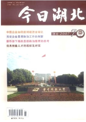 今日湖北(理论)湖北省新闻期刊