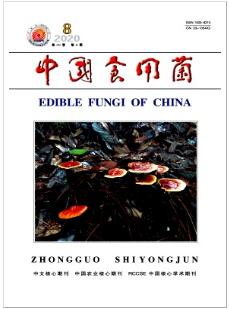 中国食用菌北大核心期刊