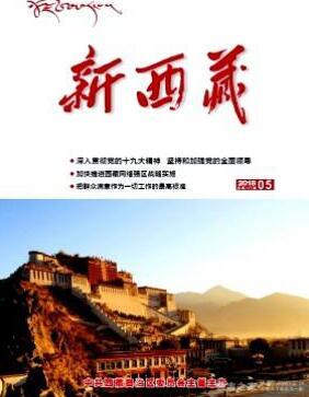 新西藏高级政工师审稿