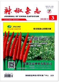 辣椒农业科技期刊