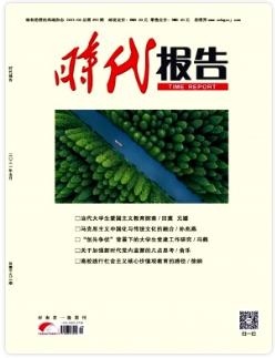 时代报告河南省文学期刊
