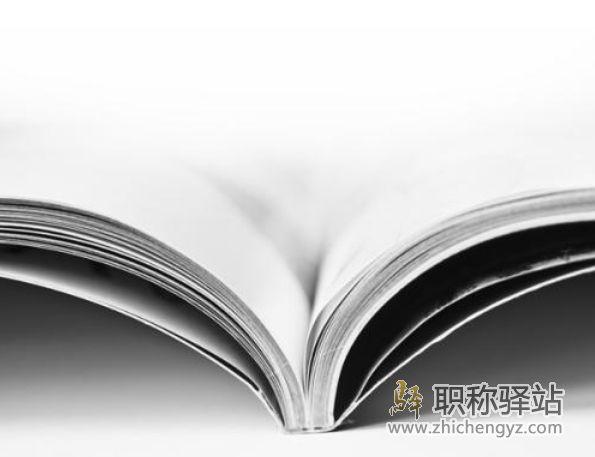 论文发表期刊的CN号怎么查询