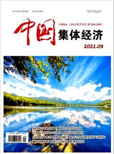 中国集体经济经济期刊发表
